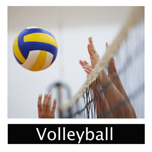 volleyball-sports